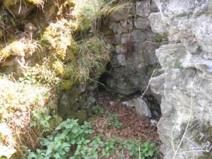 ruine burg neuwaldsee © www.waldsee-tueren.de
