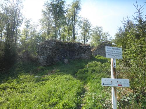 ruine burg neuwaldsee schild © www.waldsee-tueren.de