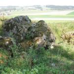 stein ruine burg neuwaldsee© www.waldsee-tueren.de