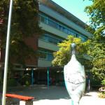 Eingang Oberschwabenklinik Krankenhaus Bad Waldsee
