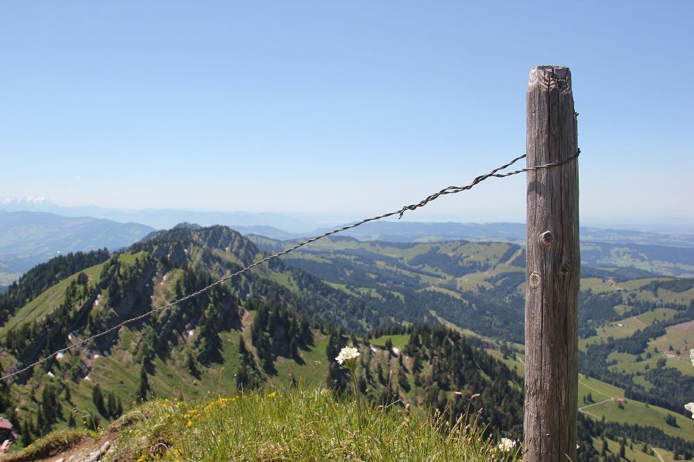 Ausblick vom Hochgrat