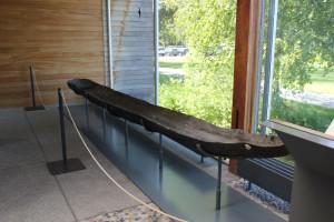 Ausgehöhlter-Baumstamm-steinzeitliches-Boot-federseemuseum