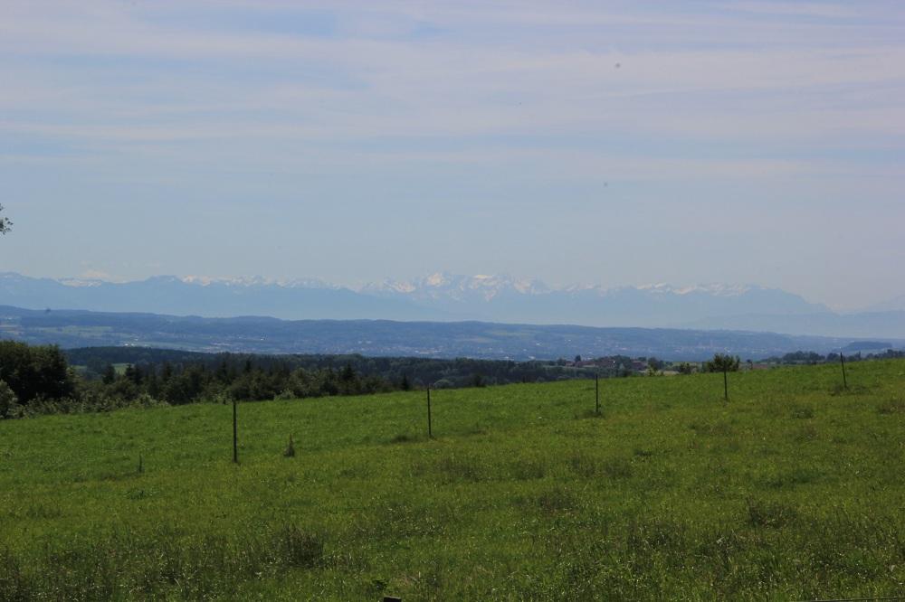 Blick zu den Alpen von Aulendorf Ebisweiler