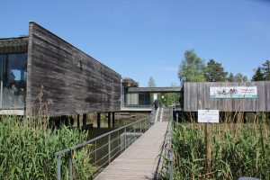 Federsee Museum Bad Buchau