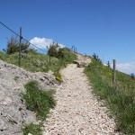 Hochgrat Gipfelweg