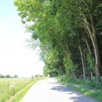 Weg nach Ebisweiler vom Aussichtspunkt aus