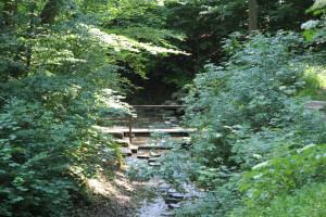 Brücklein Schussenursprung Bad Schussenried