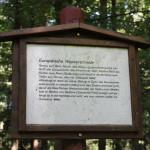 Infoschild auf dem Waldlehrpfad Tannenbühl