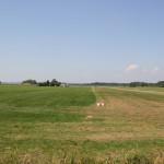 Piste Flugplatz Reute Bad Waldsee