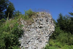 Reste der Burgrunie Neuwaldsee