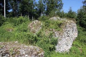 Ruine der Burg Neuwaldsee