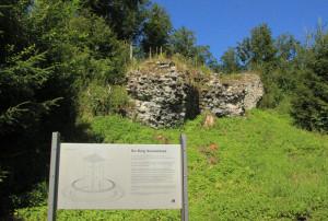 Schild und Burgreste Neu Waldsee