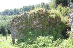 Steinreste der Burgrunie Neuwaldsee