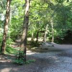 Wald Grillplatz Gaisbeuren