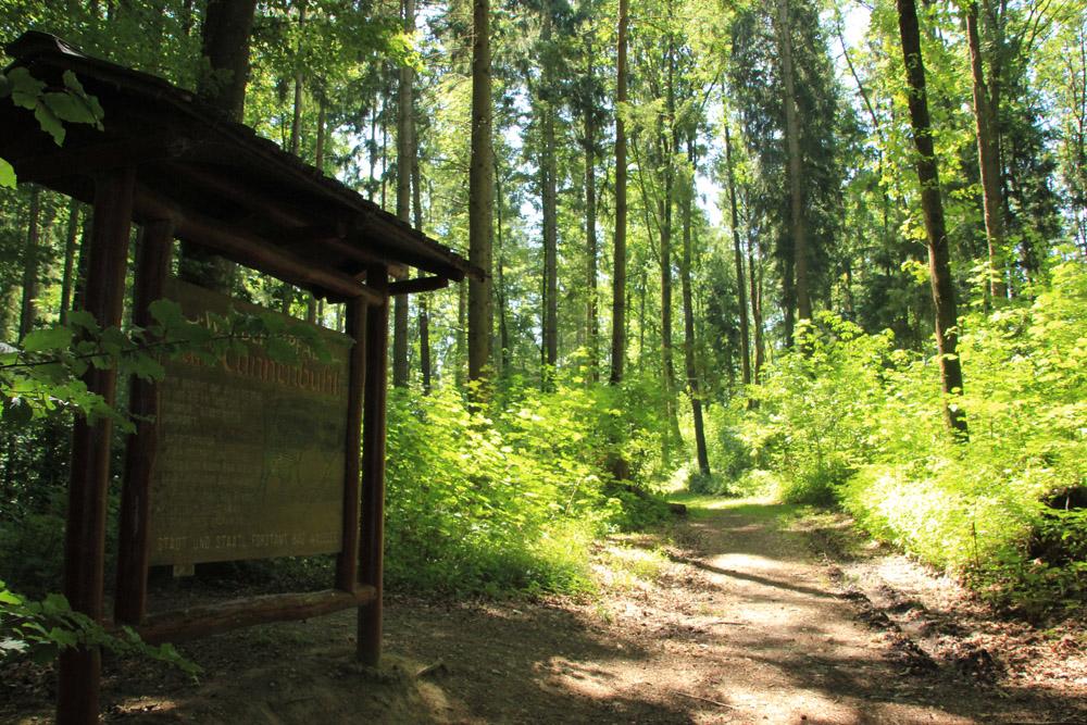 Waldlehrpfad-Tannenbühl