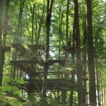 Zentralpodest Abenteuerkletterpark Tannenbühl Bad Waldsee