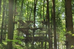 Zentralpodest-Abenteuerkletterpark-Tannenbühl-Bad-Waldsee-300x199