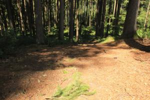 gefälle Tannenbühl Bad Waldsee