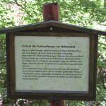 infoschild mit verschiedenen themen Waldlehrpfad Tannenbühl
