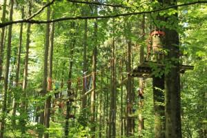 parcours im wald Abenteuerkletterpark Tannenbühl Bad Waldsee