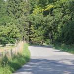 106 Bergab ins Schussental nach Durlesbach