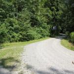 301 Abzweigung von Schussen tiefer in den Wald