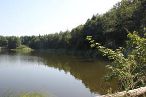 37-Pause-und-Ausblick-über-den-BUnkhofer-Weiher