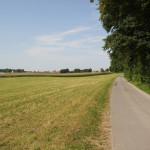 41-Baindter-Wald-Rückweg-nach-Kümmerazhofen