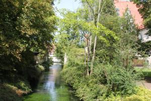 Bach durch Klosterpark Zwiefalten