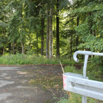 Waldeinfahrt nach Alttann