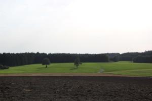 Ausblick von der Grabener Höhe nach Süden