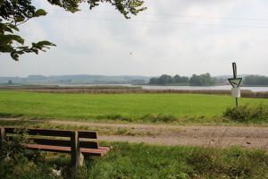 Bank mit Blick auf Vogelfreistätte Rohrsee