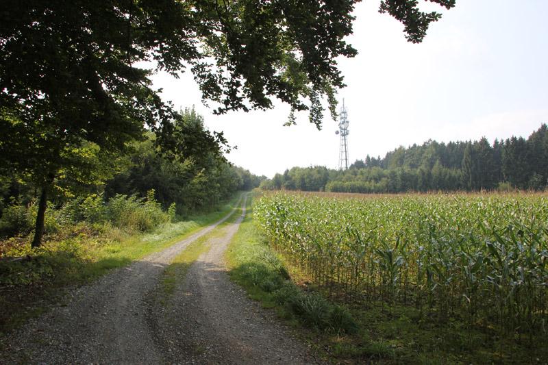 Berg hoch zum Sendemast bei Mennisweiler Bad Waldsee