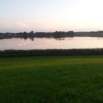 Rohrsee im Sonnenuntergang