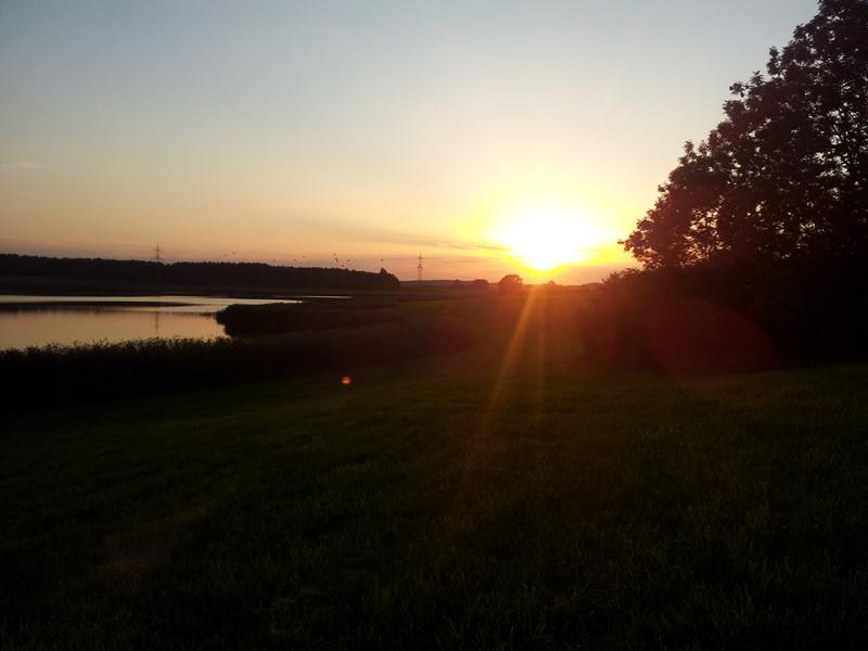 Sonnenuntergang am Rohrsee