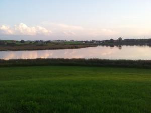 Vogelfreistätte-Rohrsee-Wolkenreflektion-im-Wasser