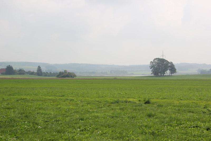 Rohrsee aus Entfernung