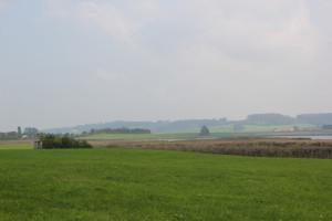 Vogelfreistäte Rohrsee