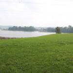 Vogelfreistätte Rohrsee bei Bad Wurzach