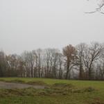 Blick über Warthausen im Nebel