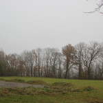 Blick-über-Warthausen-im-Nebel