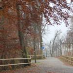 Gigelberg Biberach Herbst