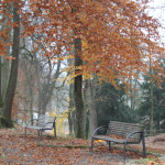 Gigelberg Biberach Naherholungsgebiet