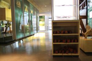 Römer Kleidung im Römermuseum