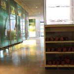 Römer-Kleidung-im-Römermuseum