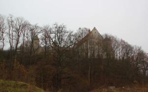Schloss-Warthausen-mit-Bäumen