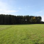 Schorren Bad Waldsee