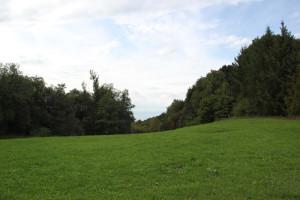 Schorren Oberschwaben Bad Waldsee