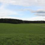 Wanderweg Arisheim Schorren