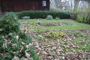 Kräutergarten-Gigelberg-Biberach
